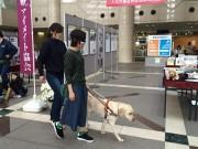 練馬区役所で「盲導犬」啓発イベント パネル展示や体験歩行など