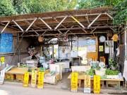 練馬で「農産物スタンプラリー」 直売所や飲食店93カ所にスタンプ設置