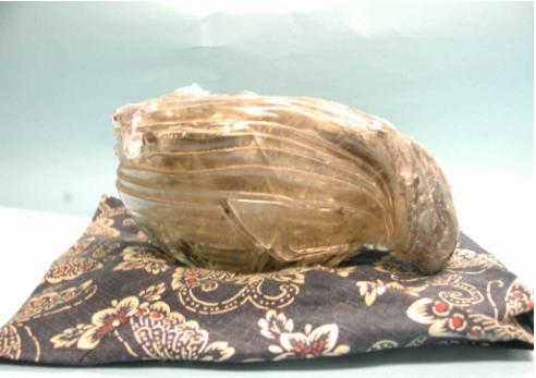 震災で溶けたガラス食器