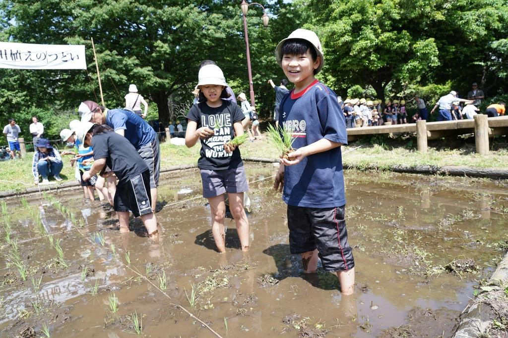 田植えを楽しむ児童