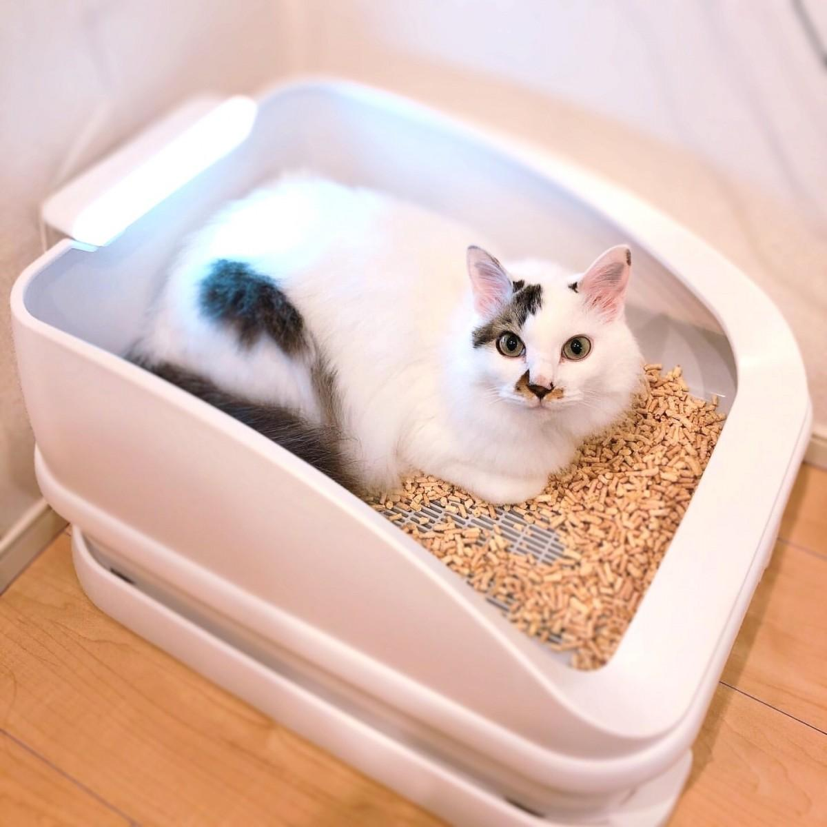 「泌尿器疾患から愛猫を守る」スマートねこトイレ「トレッタ」