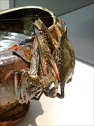日本橋三越で「-世界を驚かせた焼物-真葛香山展」 超絶技巧118点