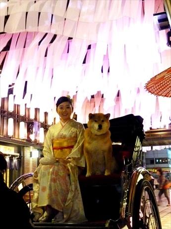 オープニングイベントには柴犬まるも登場 日本橋発祥とされる人力車で記念撮影