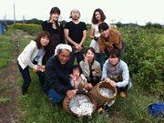 用賀の「糸紡ぎカフェ」が綿摘み体験会-渡良瀬エコビレッジの和綿畑で