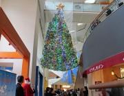 世田谷・大蔵の成育医療研究センターで折り紙ツリー点灯式 1万点集まる