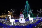 関東中央病院の冬のイルミネーションが点灯 クリスマスコンサートも