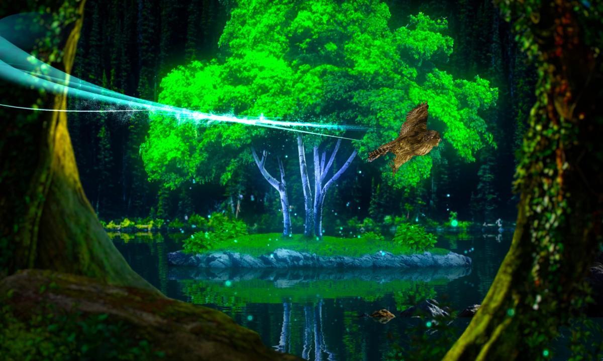 プロジェクションマッピング『光の鳥が住む森』
