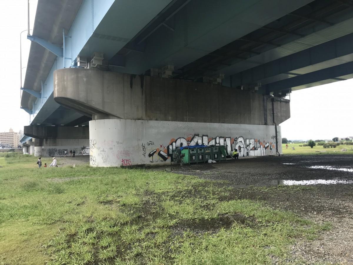 国道246号新二子橋の橋脚