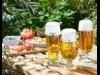 二子玉川ライズに夏季限定ビアテラス 「自然」テーマ、芝生でレジャーシート貸し出しも