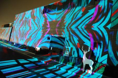 空間全体を作品に見立てるインスタレーション「光の掛け軸」