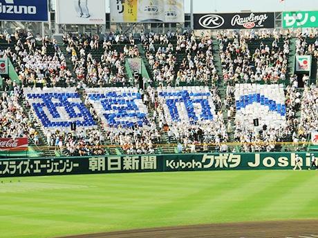 西宮の市民団体が現在、8月6日に開幕する「夏の高校野球」開会式に合わせ、スタンドに描く「人文字」の参加者を募集している