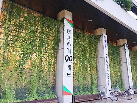 西宮市役所本庁舎の「緑のカーテン」
