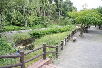 ホタルが養殖されるほたる公園