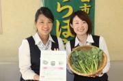 JAあきがわ、地元ゆかりの「のらぼう菜」レシピコンテスト初開催