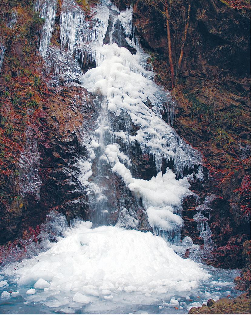 檜原村で最大結氷日を当てる「払沢の滝 氷瀑クイズ」