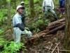檜原村で幻の収材法「ズマ」再現 むかしごと研究会の講習会で