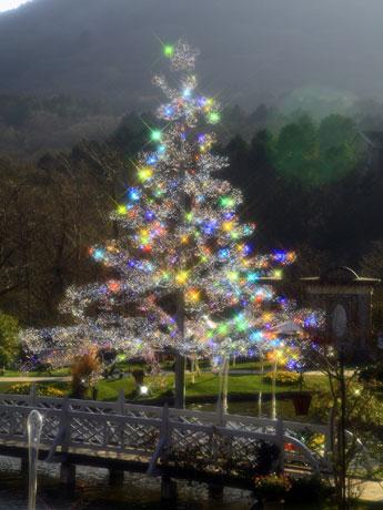 クリスタルガラスを約7万粒飾り付けたクリスマスツリー「アベーテ(もみの木)」