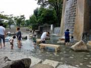 節電の夏に公園で「夕涼み」を実施-小田原の上府中公園で