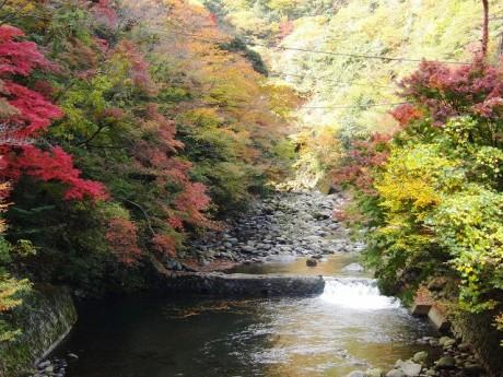塔ノ沢付近の早川渓谷の景色(昨年11月下旬撮影)