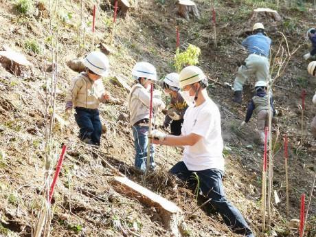 植樹イベント「ふるさとの森づくり運動・森づくり体験」の様子