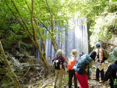 清流と滝を楽しみながら撮影も行う