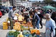 真鶴漁港の岸壁広場で「なぶら市」 地域のにぎわいと活性化をめざして