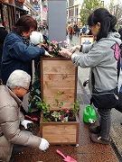小田原の商店街で新設プランターへ植栽  「街なか緑化事業」の一環で