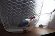 「はじめのいっぽ展2016」開催 箱根写真美術館・写真塾生による作品展