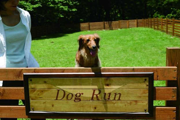 新設した小型犬専用ドッグラン