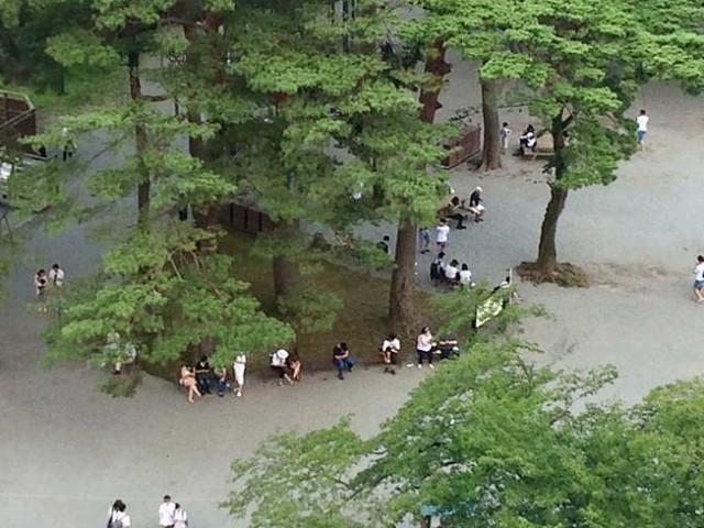 小田原城に集まり「ポケモンGO」のゲームをプレーを楽しむ人々(撮影=諏訪間順さん)