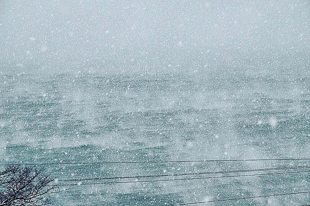 小田原の海岸で発生した「蒸気霧」(撮影=星一徳さん)