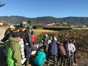 小田原でキウイフルーツ生産者向け講習会 品質評価の高まり受け安定価格に