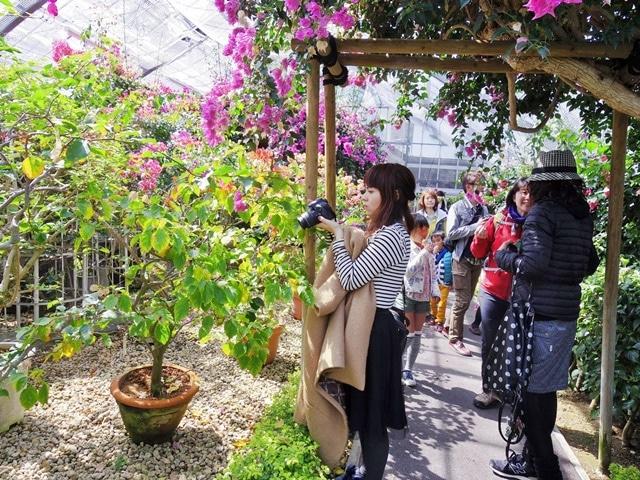 箱根の自然をテーマに開催する「はこじょ旅フォトクラブ」