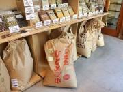 小田原の米穀店で新米「石垣産ひとめぼれ」販売 甘みと粘りが特徴
