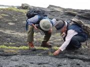 小田原山盛の会が「城ヶ島・小網代の森・油壷観察会」 生態系豊かな森づくり学ぶ