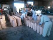 神奈川県西部・足柄平野で米の出荷続く 今年は一等米比率が高く、ブランド化加速