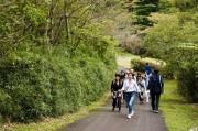 箱根・芦ノ湖畔で「はこじょマルシェ2017」 食・運動・癒やしテーマに