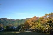 箱根・芦ノ湖畔で紅葉の見ごろ始まる 箱根全域のピークは11月の連休に