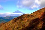 箱根・駒ヶ岳の紅葉と白い富士山が秋の競演 シルエット富士と満天の星空も