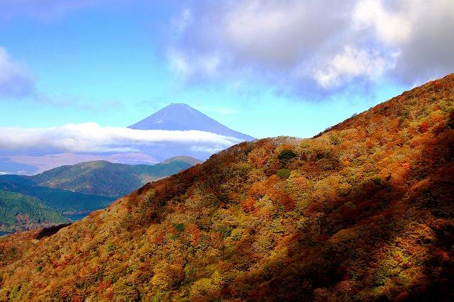 箱根の紅葉と富士山(11月7日撮影)