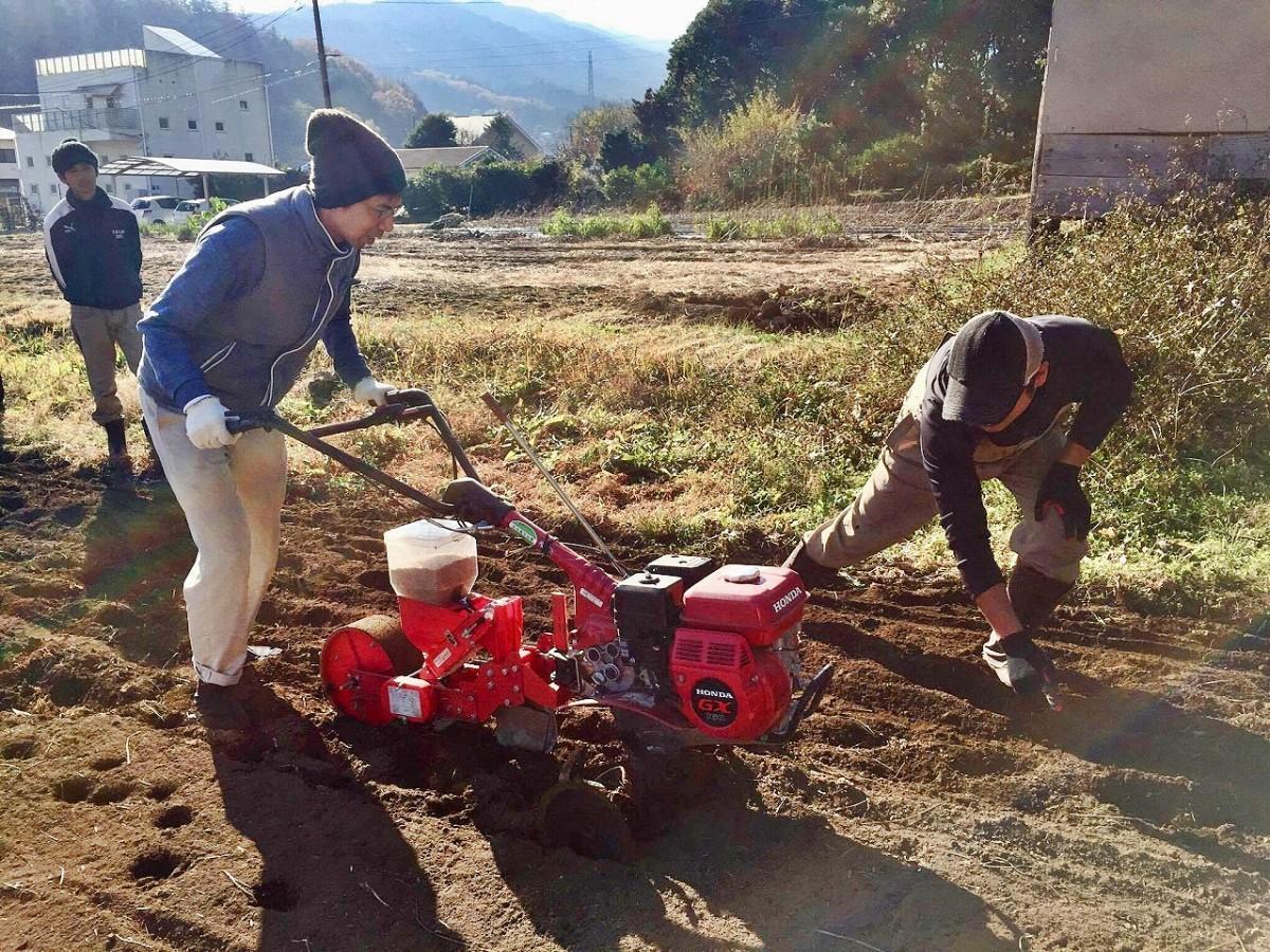 麺を作る小麦の種まきから始まる