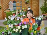 小田原で「パンジー・ビオラのカントリーガーデン展」 希少な品種が勢ぞろい