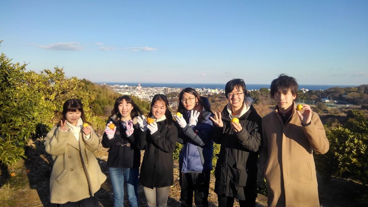 湘南ゴールドの収穫体験をした「東大みかん愛好会」のメンバー