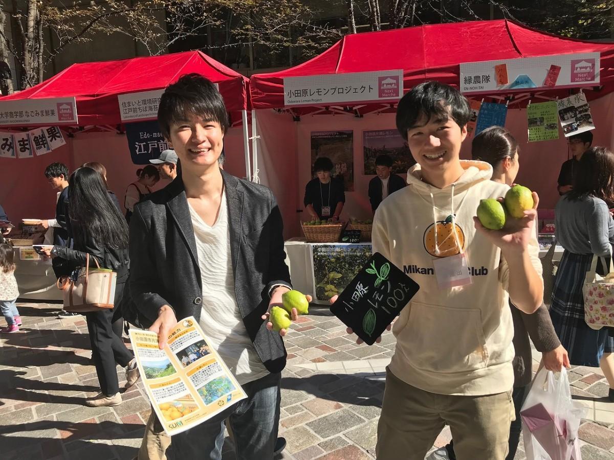 小田原のレモンをPRするプロジェクトメンバー