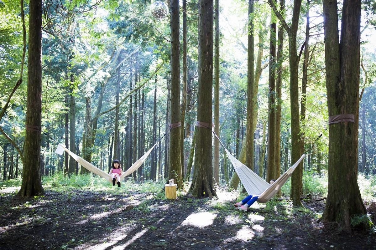 自然に囲まれた環境でハンモックによるパワーナップ(power-nap)を楽しむ
