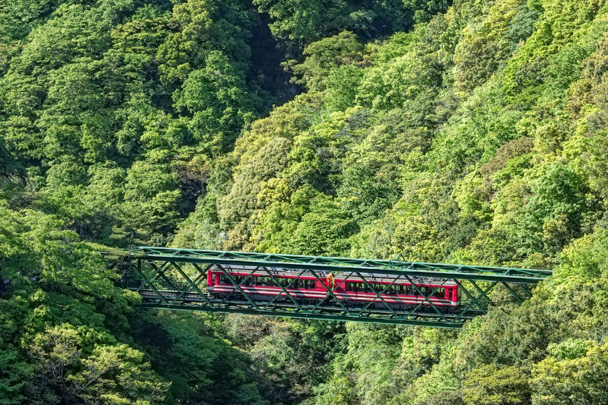箱根登山鉄道のハイライトともいえる「出山の鉄橋」。明治期に製造され、登録有形文化財にも登録されている貴重な鉄橋の下には、箱根山内の沢の水を集めて早川が流れている(写真提供=大橋史明)