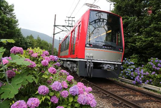7月23日の始発より全区間(箱根湯本駅~強羅駅)での運行を開始