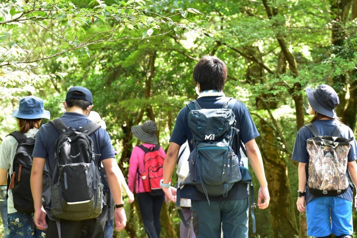ゆったりとした深呼吸で箱根の森林の空気を体に取り入れる森林散策を楽しむ「森林セラピー」