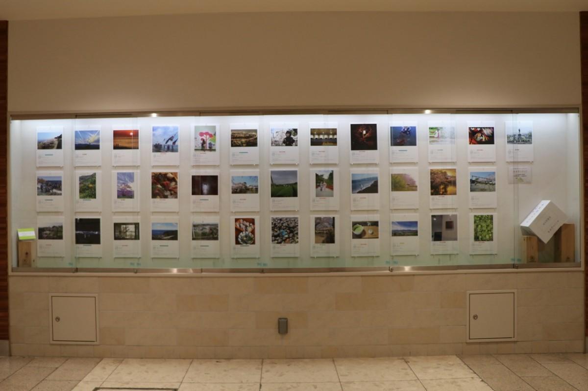 ハルネギャラリーで開催された前回の「小田原のチカラ写真展」の様子