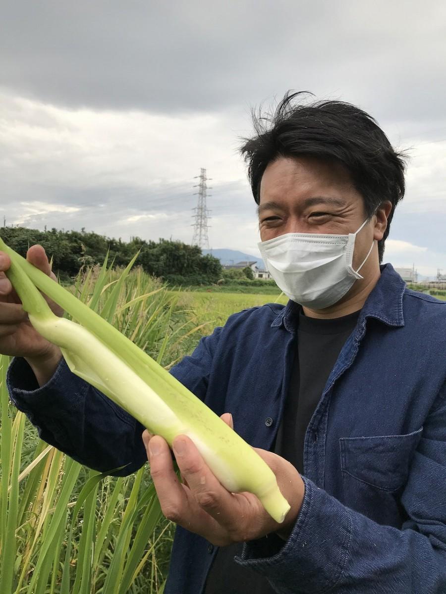 「RISTORANTE IL NODO (イル ノード)」オーナーシェフの松井昭憲さんがマコモダケを収穫した様子